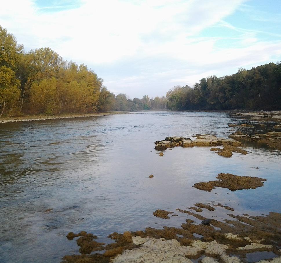 Etiage de la Garonne à Saubens